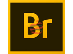 Adobe Bridge CC 2019 For Mac v9.0.2.219 图片资源管理软件